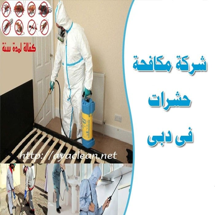 شركة مكافحة الحشرات بدبى  0569057991